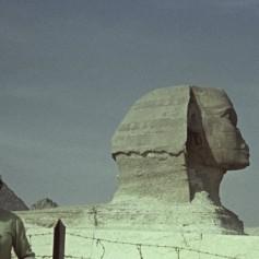 Египет хочет именно для россиян продлить срок действия бесплатных виз