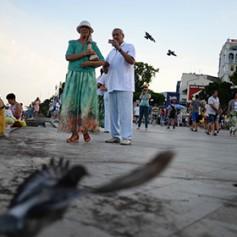 Число туристов, посетивших Крым в текущем году, может достичь 5 млн человек