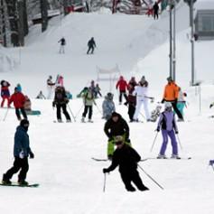 На горнолыжных трассах Сочи может быть введен единый ски-пасс