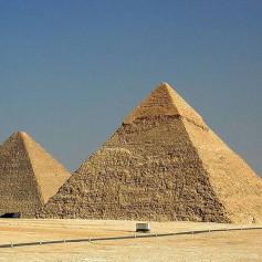 Акула убила немецкого туриста, купавшегося в Египте