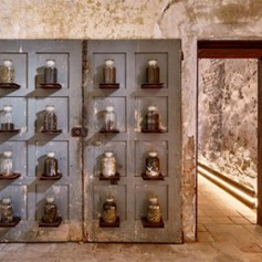 В Италии открылся музей экскрементов