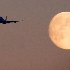 Распродажа авиабилетов по России, а еще в Турцию, Швецию, Израиль и Латинскую Америку