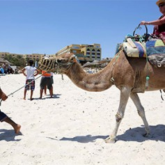 Спрос на туры в Тунис упал в два раза