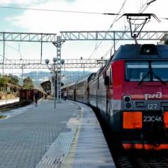 Движение поездов в Сочи нарушено из-за упавшего на железнодорожные пути дерева