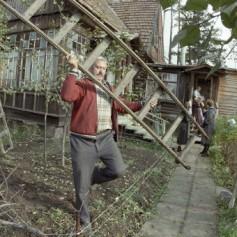 За четверть века россияне стали больше ценить спокойный летний отдых
