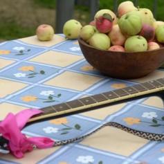 Фестиваль «Антоновские яблоки» прошел в Липецкой области