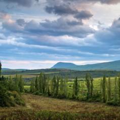 Мурадов: за полтора года Крым посетили около 9 миллионов человек