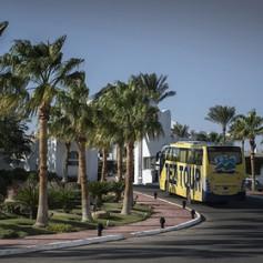 Российских туристов отвезут в Шарм-эль-Шейх на автобусах