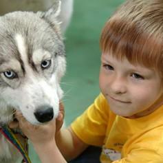 В Шереметьево задумались о введении должности собаки-психотерапевта