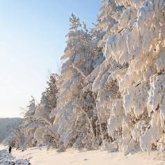 Американский журнал включил Сибирь в список лучших направлений для туризма