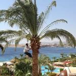 В Шарм-эль-Шейхе из-за отмены авиасообщения с Россией закрылись свыше 50 отелей