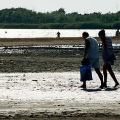 Крымские власти решили заманить туристов при помощи грязи