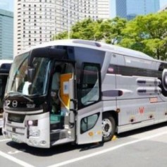 Стоит ли отправляться в путешествие на автобусе
