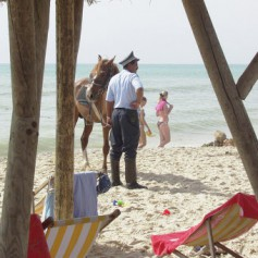 Лавров: Тунис предпринимает меры для безопасности курортных зон