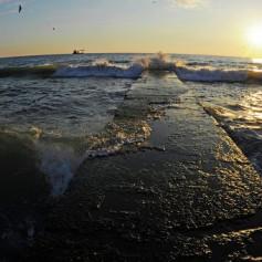 Самое чистое Черное море в Сочи, заявляет мэр города-курорта