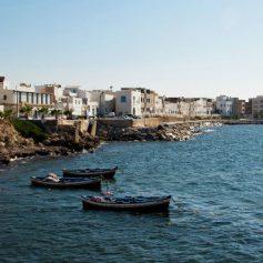 Поток российских туристов в Тунис вырос в шесть раз
