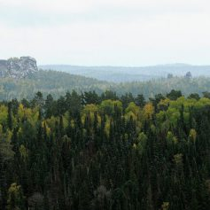 Вход на территорию красноярского заповедника «Столбы» ограничен