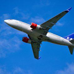Пассажирский самолет SAS аварийно сел в Новосибирске