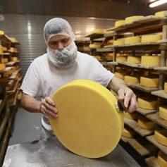 Фермеры привезут в Москву на «Сырные дни» более 100 сортов сыра