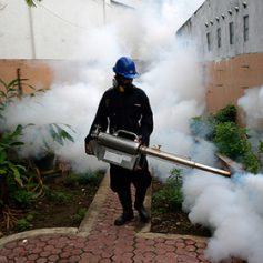 У вернувшихся из Доминиканы россиян обнаружен вирус Зика