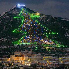 В Италии зажгли 650-метровую новогоднюю «елку»