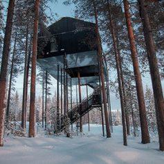 Рядом с Северным полярным кругом создали отель «на деревьях»