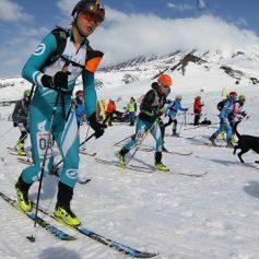 В России с января начал действовать общий стандарт для горнолыжных курортов