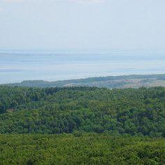 В Ульяновской области создан национальный парк «Сенгилеевские горы»