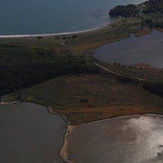 Приморские власти планируют ежегодно наращивать туристический поток на 30%