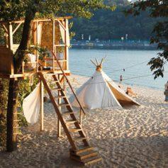В Киеве откроют мини-отель на дереве