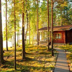 Летний отдых в Лапландии