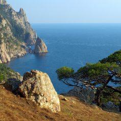 Стали известны основные жалобы туристов на отдых в Крыму