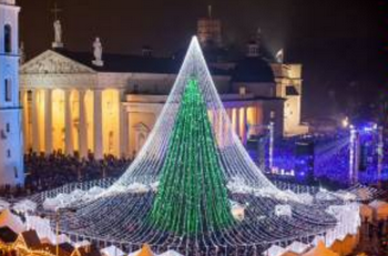 Из-за рождественской ели в Риме разгорелся скандал