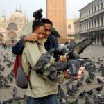 На улицах Венеции запретили продавать пиццу с колой