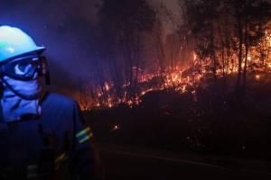 Пожары на юге Европы: вместе с Португалией горит Испания