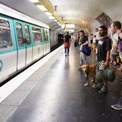 В Париже тестируют сервис для туристов, ставших жертвами карманников