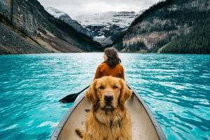 Куда и за чем поедут туристы в 2019 году: главные тенденции