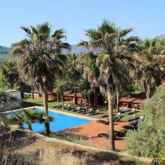 В Анталье готовится к открытию первый отель для веганов