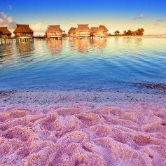 Мэрию раскритиковали после попытки покрасить пляжи флуоресцентной краской