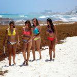 Пляжи мексиканских курортов снова покрываются тоннами водорослей