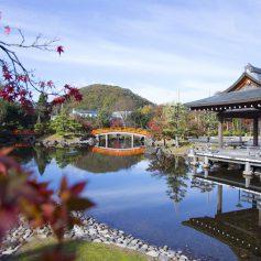 Сезон момидзи в Японии: комфортно и красиво