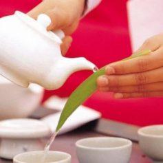 Сеул анонсировал Всемирный фестиваль чая-2019