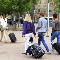 Как бизнес может влиять на стандарты образования в туризме?
