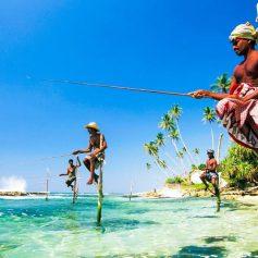 Отели Шри-Ланки снижают цены и российские туристы показывают рост в 86%