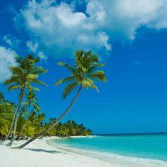 ФБР выяснило обстоятельства смерти американских туристов в Доминикане