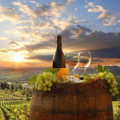 Названы самые дорогие вина Италии