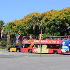 Испания может создать «коридоры безопасности» для иностранных туристов