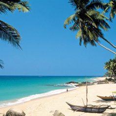 Шри-Ланка вводит новые требования для туристов и просит за визу уже 100 долларов США