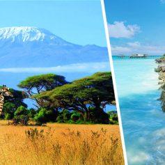 Coral Travel запускает чартер на Занзибар: озвучены расписание и цены на туры в Танзанию