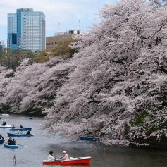 Япония открывает границы для вакцинированных туристов, но есть одна загвоздка